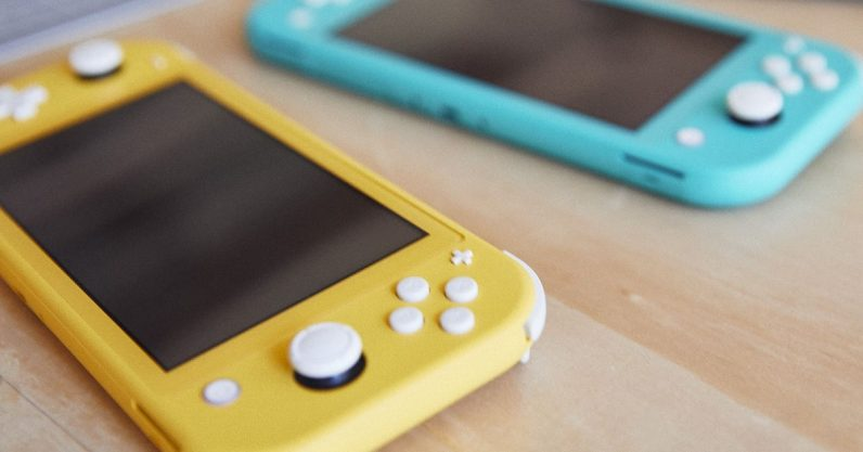 Nintendo Switch Lite.